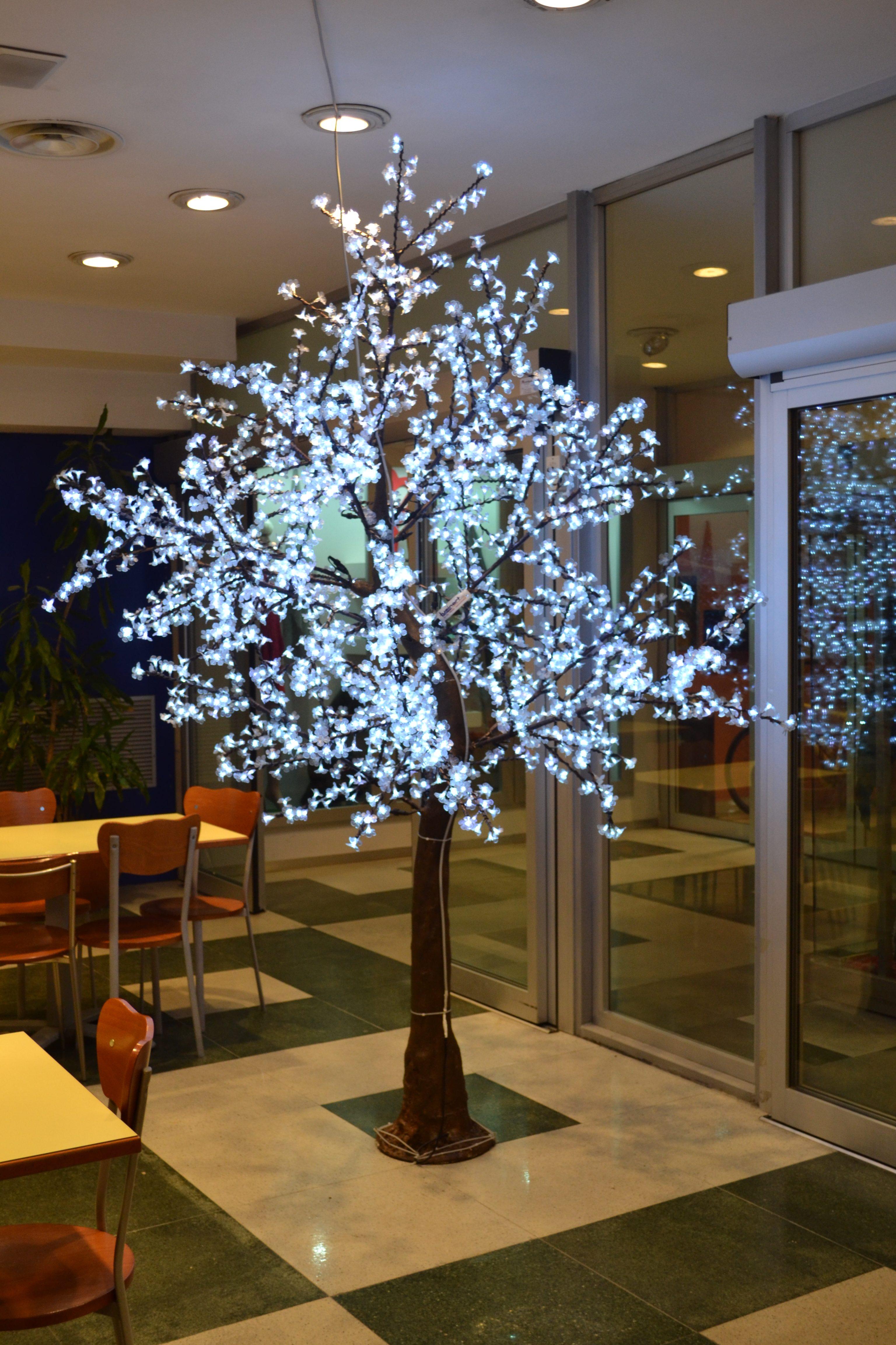 albero di natale led caserta